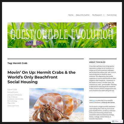 Hermit Crab – Questionable Evolution
