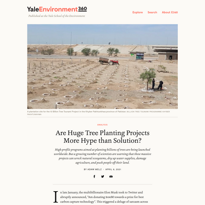 Are Huge Tree Planting Projects More Hype than Solution?