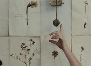 Daisies (1966) dir. Vera Chytilová
