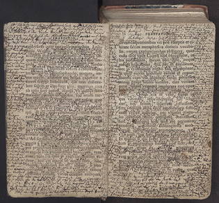 Kant's copy of Baumgarten Aesthetics with his marginalia