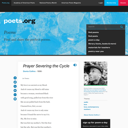 Prayer Severing the Cycle