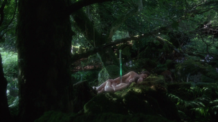 2021-07-08-12_34_53-excalibur.1981.1080p.bluray.x264.yify.mp4-vlc-media-player.png