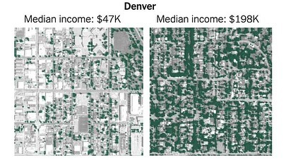 🌲 A visual representation of tree inequity based on median income. Repost @americanforests