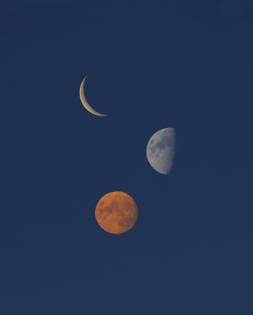 158_synchrodogs_three_moons_blue_sky-copy.jpg