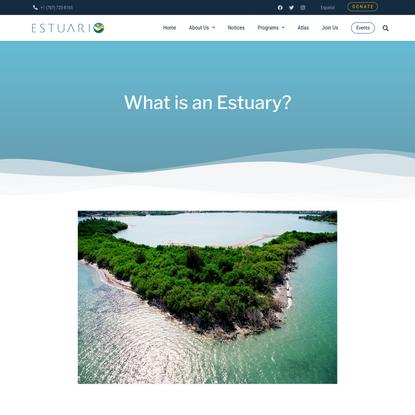 What is an Estuary? – Estuary
