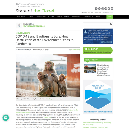 COVID-19 and Biodiversity Loss: How Destruction of the Environment Leads to Pandemics - Consilience Considers