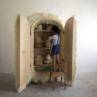 Furry Agave Fiber, Birch Plywood, and Hand Carved Maple Cabinet by Fernando Laposse, 2021