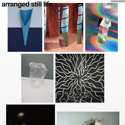 arranged still life
