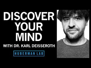 Channelrhodopsins and light - Dr. Karl Deisseroth