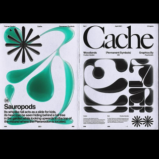 Cache // mini Zine - By Psychosiris