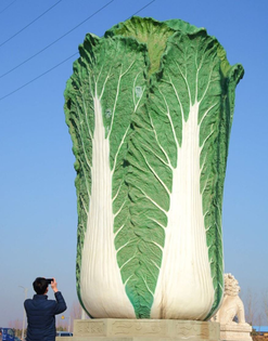 cabbage-scultpure-in-liaocheng-china.jpg