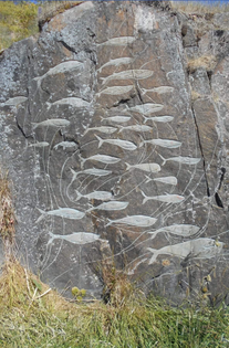 Petroglyph depicting whales, Qaqortoq, Greenland, 2010.