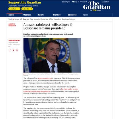 Amazon rainforest 'will collapse if Bolsonaro remains president' | Amazon rainforest | The Guardian