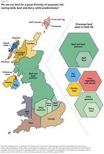 Land Use - UK Food Strategy report