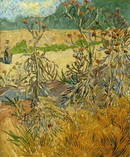 Thistles, 1888 van Gogh