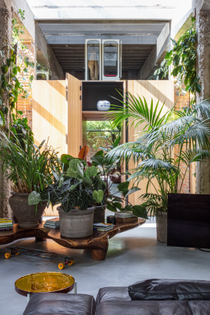 the-architects-used-potted-greenery-and-climbing-plants-to-demarcate-the-various-living-spaces.jpg
