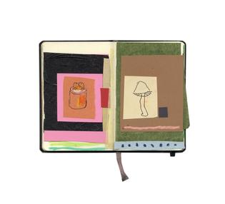 sketchbook_colour-mushroom-copy.jpg?format=2500w