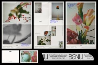 banu-assets-2.jpg