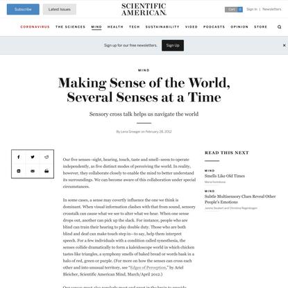 Making Sense of the World, Several Senses at a Time