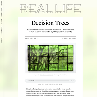 Decision Trees — Real Life