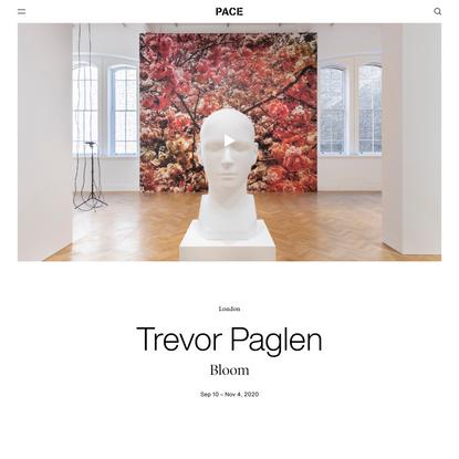 Pace Gallery | Trevor Paglen: Bloom