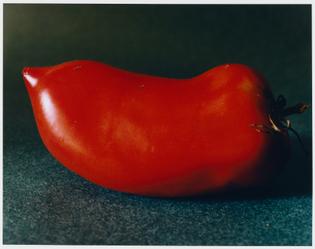 tomate_coquerel_2021-1897x1500.jpg