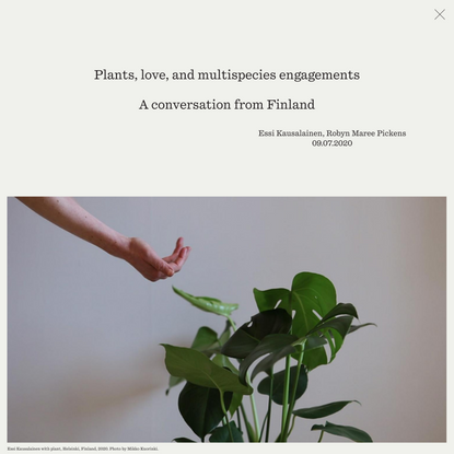 Plants, love, and multispecies engagements