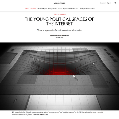 The Young Political Spaces of the Internet   The New Yorker