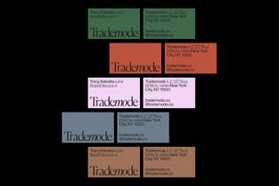 timsemple-interview-1.jpg
