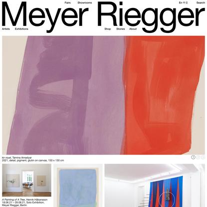 Meyer Riegger | Home