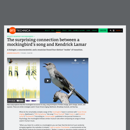 The surprising connection between a mockingbird's song and Kendrick Lamar