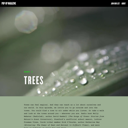 Trees - Pop-Up Magazine Field Guide
