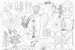 Jun Lin - Slow Forage Poster