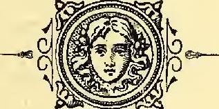 in_guittalemme_-_-il_paese_dei_comici_disperati-_-ia_inguittalemmeilp02libe-_-page_5_cropb-.jpg