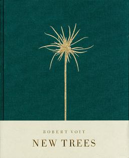 Robert Volt - New Trees