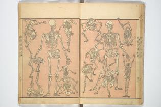 Kyōsai Sketchbook 1881