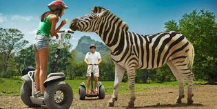 mauritius-segway-safari-trip-2-.jpg
