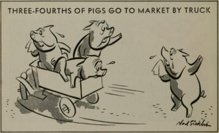 Three-Fourths of Pigs Go To Market By Truck