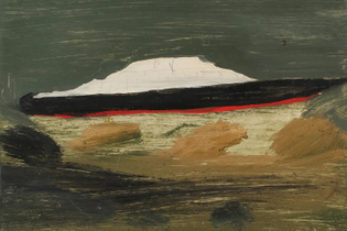 Cruise Ship, oil on photographic paper. Photo: Frank Walter