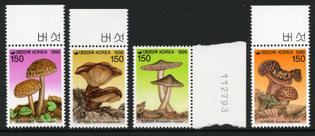 korea-south-_1996a.jpg