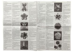 mp2_newspaper_spread1.jpg