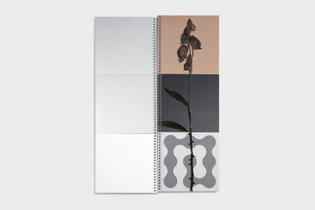 Kado by Vrints-Kolsteren Editions
