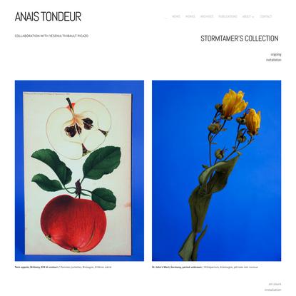 STORMTAMER'S COLLECTION — ANAIS TONDEUR