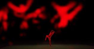 Sydney Dance Company 'Anima' 2016