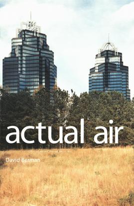 David Berman - Actual Air
