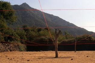 Cecilia Vicuña, Corral Grid, 1994, San Fernando, Chile