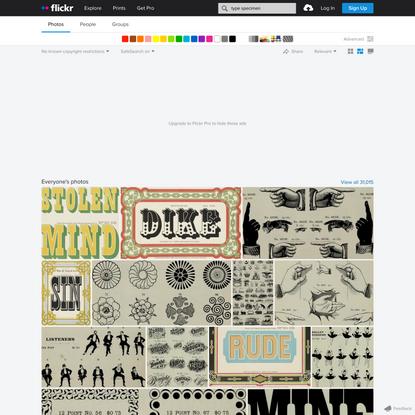 "Flickr Search — ""type specimen"""