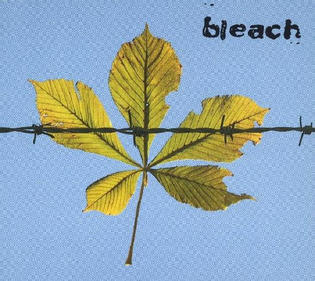 bleach-ep.jpeg
