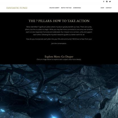 The 7 Mycelium Pillars: How to Take Action Now | Fantastic Fungi