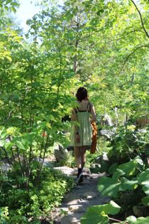 Japanese Garden - Desai Wang
